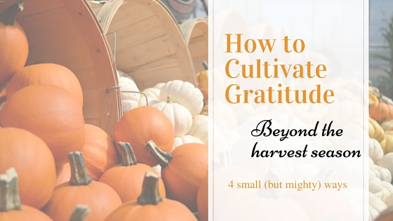 4 Ways to Grow Gratitude All Year Long