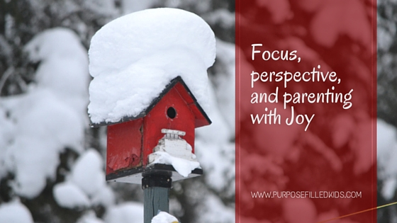 Focus, Perspective, and How to Parent with Joy
